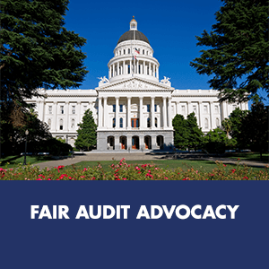 Fair Audit Advocacy